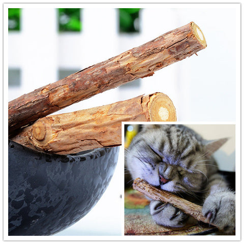 Cat cleaning Teeth Pure natural catnip pet cat molar Toothpaste stick