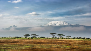 Kenya: A Trip To Remember-World Smart Apparel