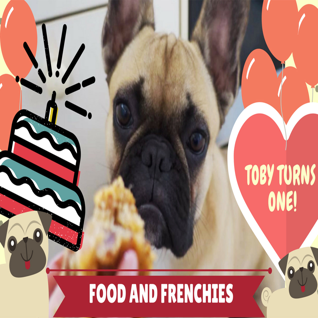 Food And Frenchies Date And Walnut Loaf (Episode 1)