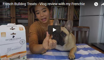 French Bulldog Treats - Vlog Review With My Frenchie
