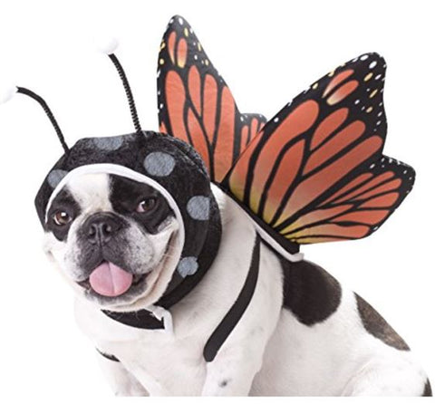 French Bulldog Clothes Butterfly Outfit