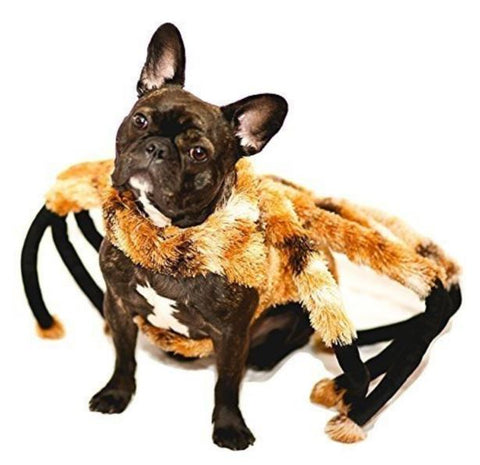 French Bulldog Clothes Spider Tarantula Costume