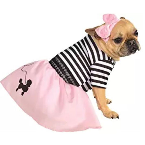 French bulldog dress