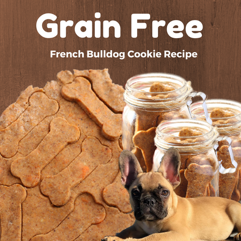 French Bulldog grain free sweet potato cookies