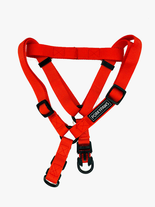 Fuss Free Strap Dog Harness