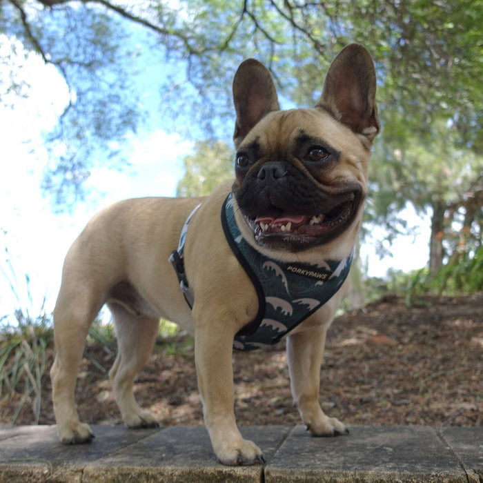 Reversible Form-Fitting Breathable Neoprene Dog Harness in 'Tribal Waves'