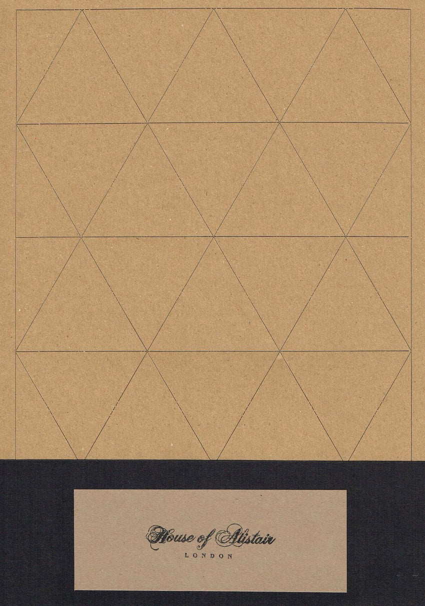 "2.5"" Triangle Paper Piecing Pack"