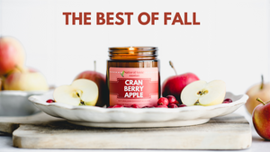 FALL HOLIDAY SOY CANDLES