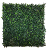 3D green wall with ivy, grasses and ferns