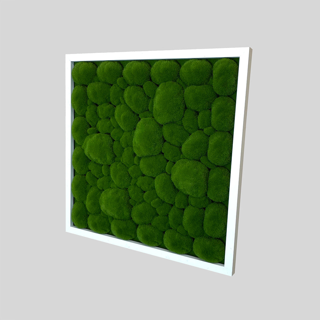 Artificial bun moss wall square art panel MDF White - 50cm