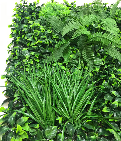 Artificial green wall panel with mixed foliage grasses, cedars and boston ferns 100x100 cm