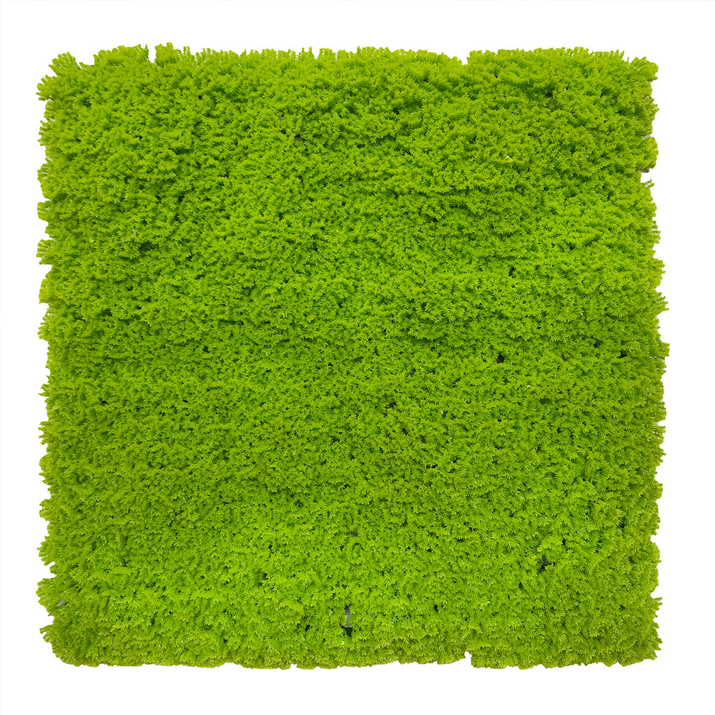 Artificial lime green lichen moss panel 100x100 cm