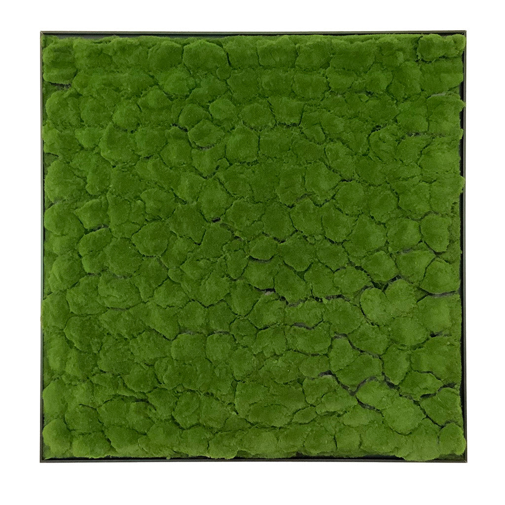 Framed Artificial green bun moss art panel 100x100 cm - www.greenplantwalls.co.uk