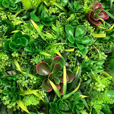 Artificial green wall panel with succulents  100x100 cm