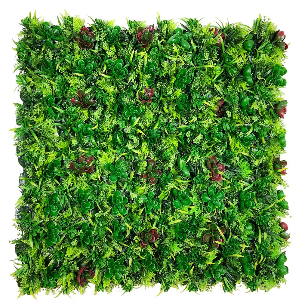 Artificial green wall panel with succulents  100x100 cm - www.greenplantwalls.co.uk