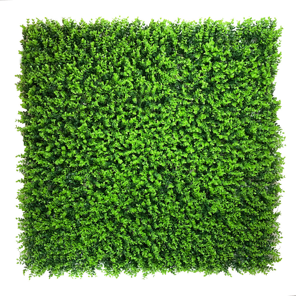 Artificial green wall mixed plant panel with button moss 100x100 cm - www.greenplantwalls.co.uk