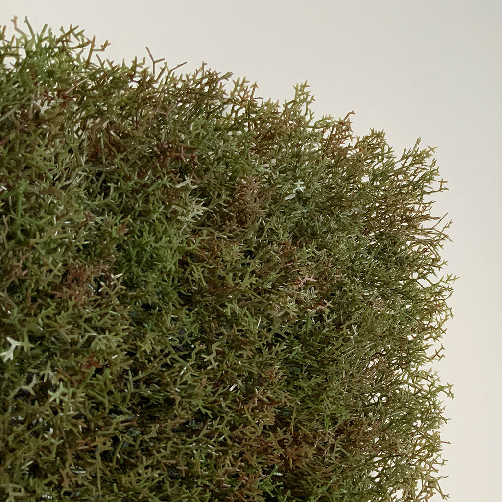 Artificial olive green-brown reindeer moss panel 100x100 cm - www.greenplantwalls.co.uk