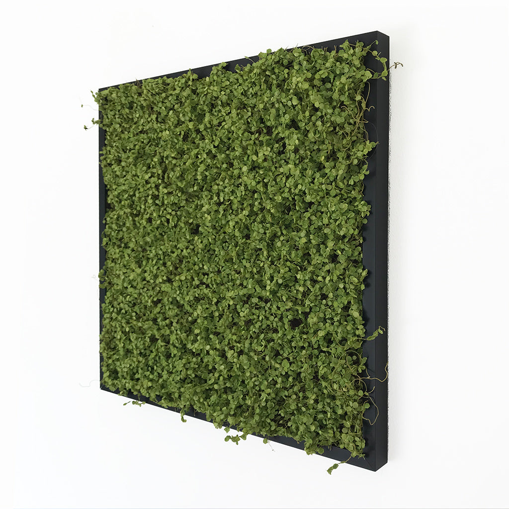 Artificial twig moss wall art panel - set of 3