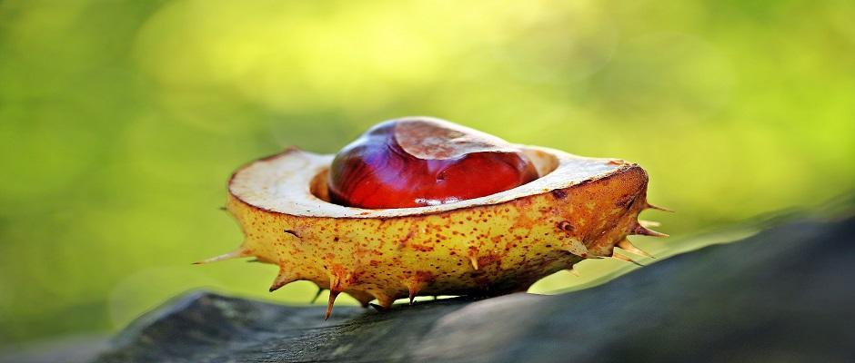 https://ucl.scienceopen.com/collection/covid19-specialseries