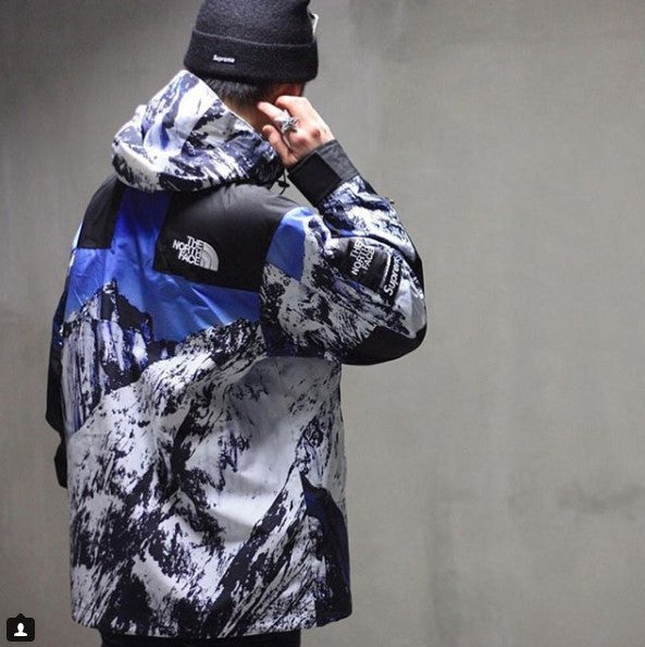 e23e28d7 SUPREME x TNF MOUNTAIN BALTORO PARKA 17FW