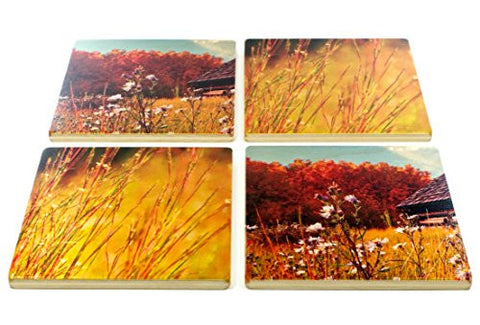 Set of 4 Wooden Coasters - Autumn Prairie