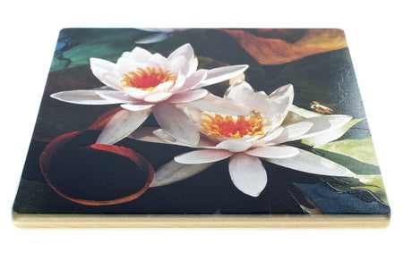 Water Lily Coasters - From Original Painted Photography By Martha Everson - Set of 4 Coasters