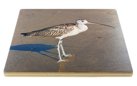 Shore Birds Coasters - From Original Painted Photography By Martha Everson - Set of 4 Wooden Coasters