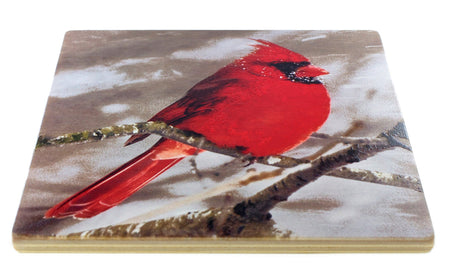 Winter Birds Coasters - From Original Painted Photography By Martha Everson - Set of 4 Coasters