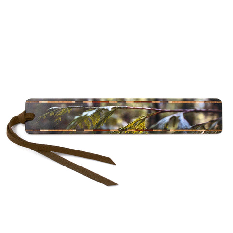 Young Cedar Branch - Color Photograph by Mike DeCesare - Wooden Bookmark with Tassel