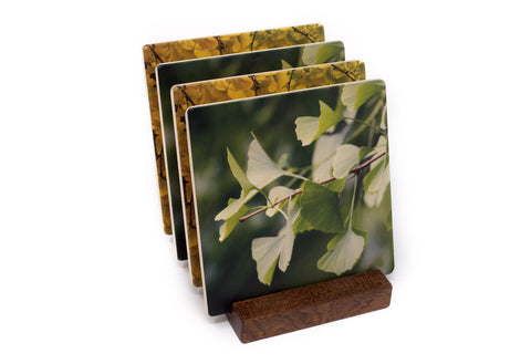 Gingko Leaves by Mitercraft - set of 4 or 6 wood coasters with optional holders - set #30