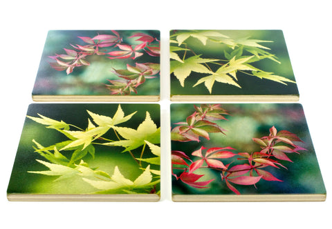 New Maple and Fall Leaves Wood Coasters by Mitercraft - set of 4 or 6 with optional holders - set #28