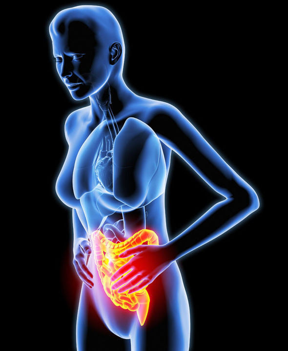 WHAT CAUSES INFLAMMATORY BOWEL DISEASE? – Immunophen