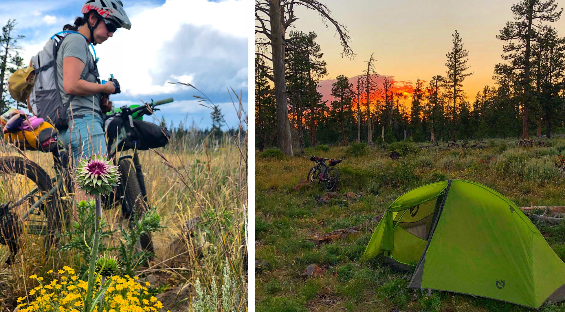 Riding the Oregon Timber Trail and bike packing