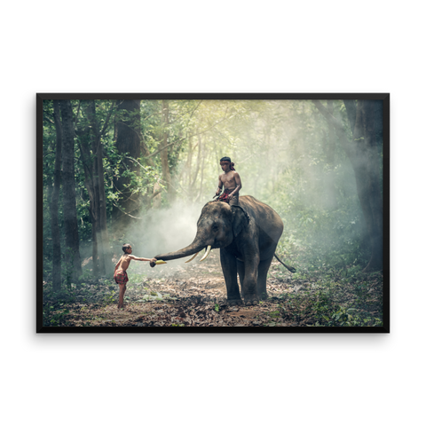 Framed Photo Paper Poster | Elephant