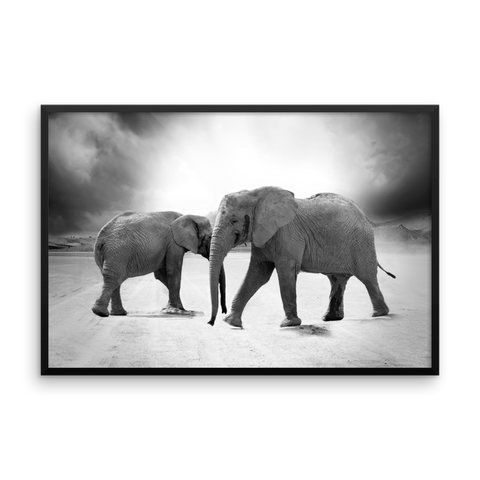Framed Photo Paper Poster | Elephants