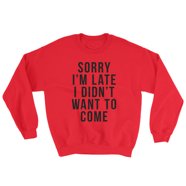 Funny Mens Pullover Sweater