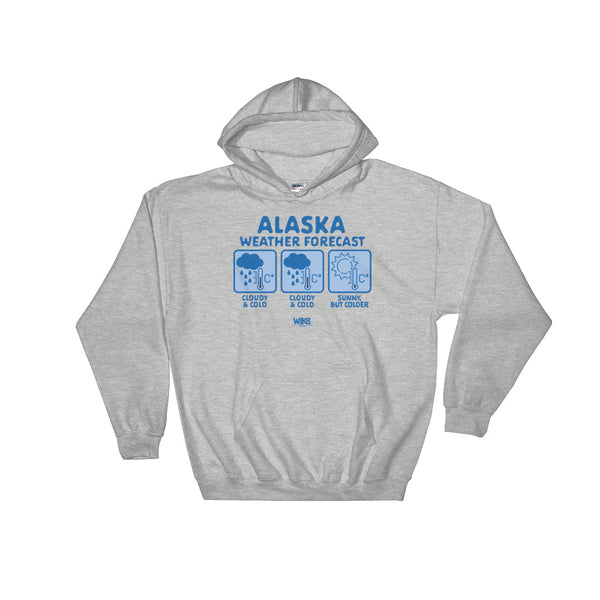 Alaska Weather Forecast | Unisex Hooded Sweatshirt