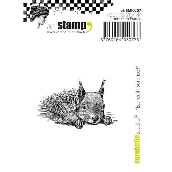 "Carabelle Studio Cling Stamp Small 2""X2.75"", Squirrel - Surprise!"