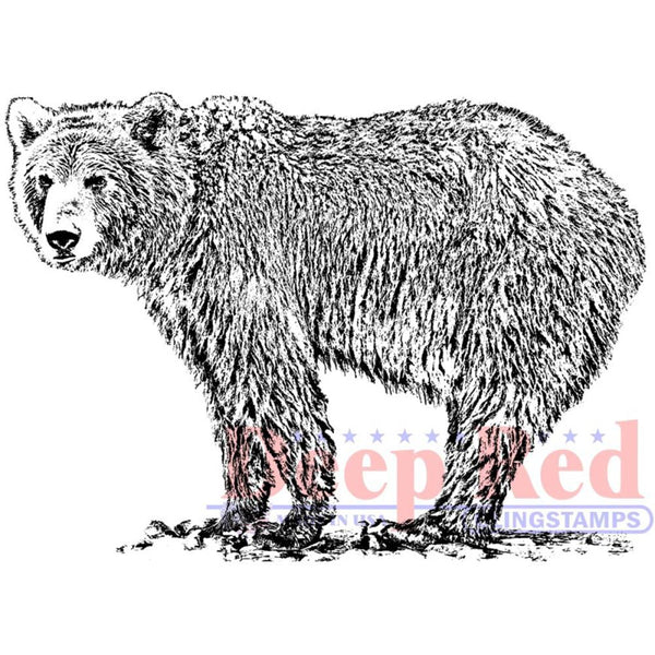 "Deep Red Cling Stamp 2.9""X2.1"", Grizzly Bear"