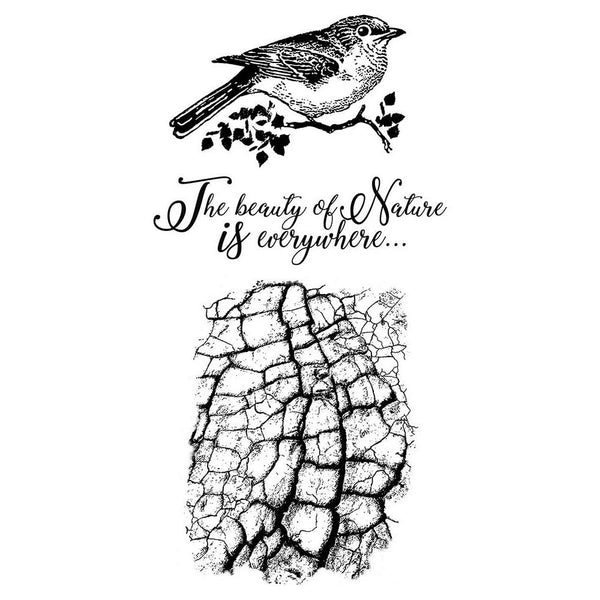 "Stamperia Cling Stamp 3.94""X6.5"", Cosmos Bird"