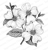 Impression Obsession, Dogwood 3, Cling Stamp - Scrapbooking Fairies