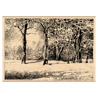 "Penny Black Mounted Rubber Wooden Stamp 3"" x 4.25"",  Snowy Park"