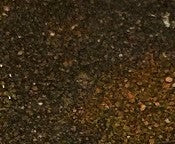 Emerald Creek, Burnt Copper Leaves Embossing Powder, 20g