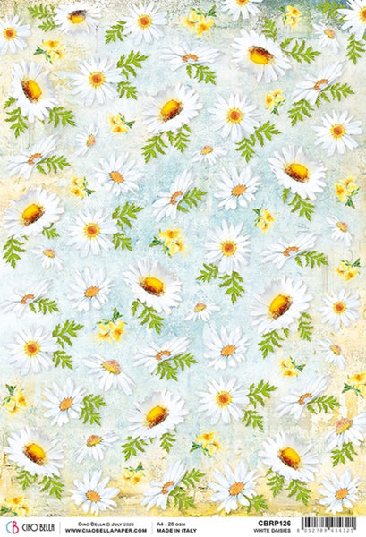 Ciao Bella Rice Paper Sheet A4, White Daisies, Microcosmos