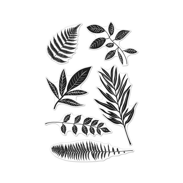 "Hero Arts Clear Stamps 4""X6"", Stamp Your Own Plant"
