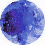 Color Burst - Indigo Powder - Scrapbooking Fairies