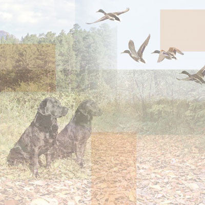 "12"" x 12"" Duck Hunting Collage Paper - Scrapbooking Fairies"