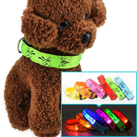 Dog LED Nylon Collar
