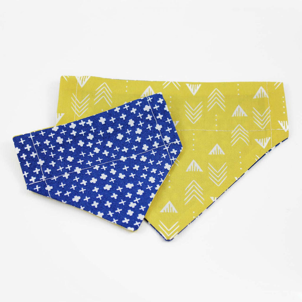 blue and yellow cat bandanas