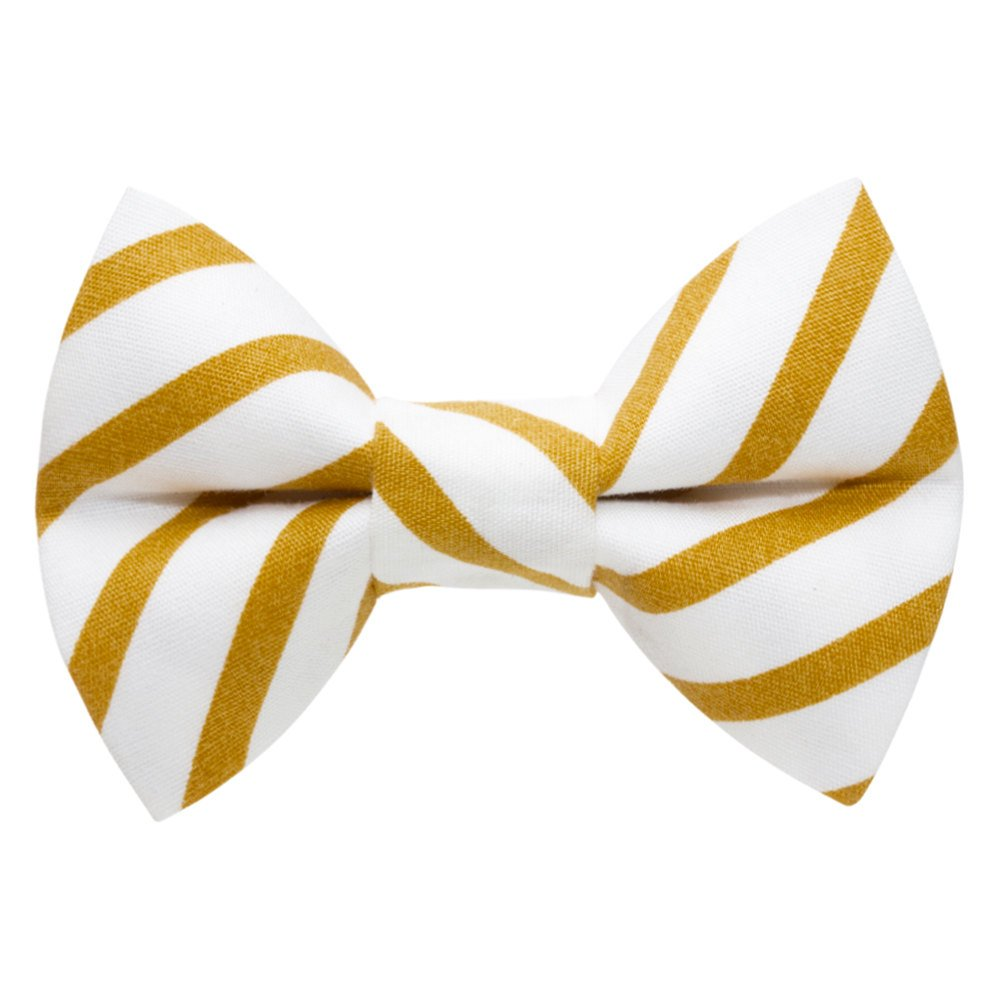 white and gold striped cat bow tie